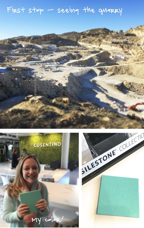Kristina Crestin Design_Cosentino Silestone trip A
